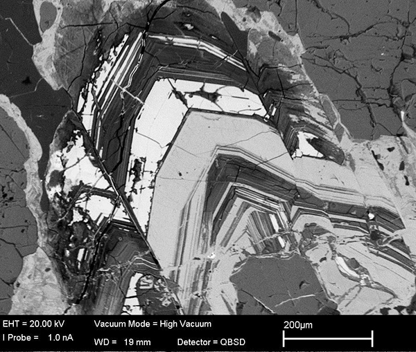 Back-scattered electron image of large zoned allanite in hydrothermal vein, Loch Loyal syenite complex (Walters et al., 2013)