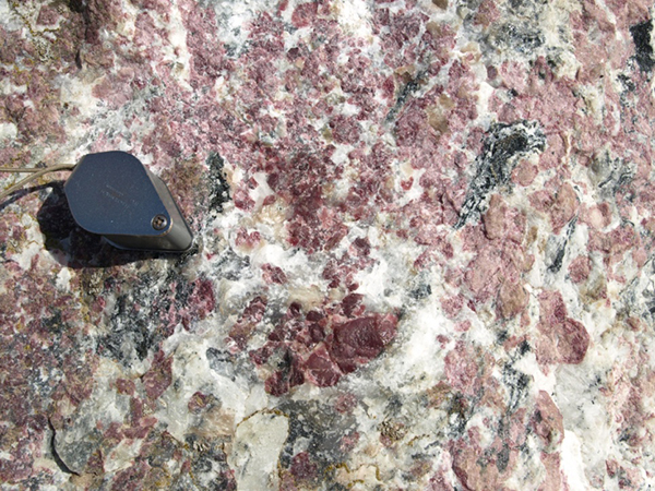 Close up of coarse, subhedral to anhedral red eudialyte in situ, in outcrop of pegmatitic grennaite in the Norra Kärr (photo E Jonsson).